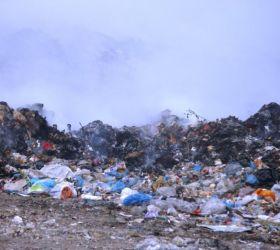 """Ndotja nga plehrat në Kuçovë në vëmendje të organizatës mjedisore """"EDEN"""""""